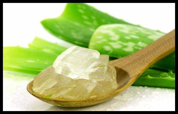 Utilizar aloe vera para curar los hemorroides